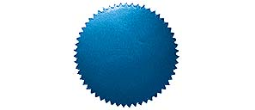 "Blue embossing seal,Blue 2"" Seal,Blue Foil Embossing Seal,Blue Embossing Seal, Blue Foil Seal, Serrated Notary Seal, marriage seal, marriage embosser seal, wedding certificate seal,  notarytrainer.com"